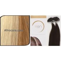 Zen Pure U-Tip Hair Extensions 18 inch Colour P27-613